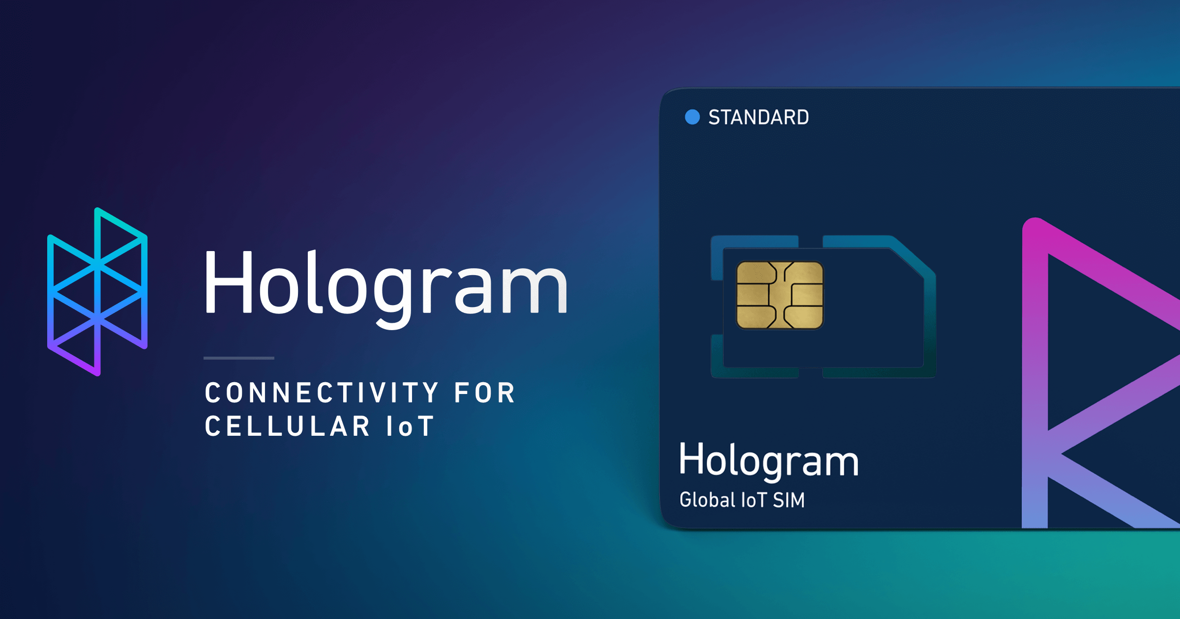 Cellular Connectivity for the Internet of Things | Hologram